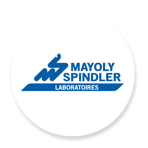 Mayoly spindler.png