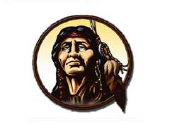 Wawasee Warriors