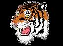 Bluffton Tigers.png