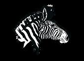 Rochester Zebras.png
