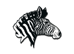 Rochester Zebras