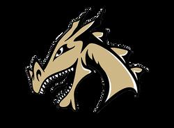 Argos Dragons