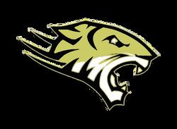 Peru Tigers