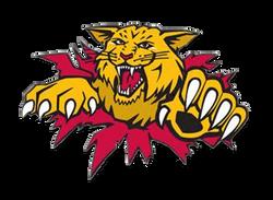 Oregon Davis Bobcats