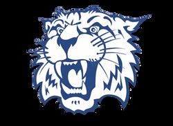 Whitko Wildcats