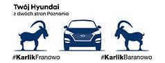 Hyundai Karlik.jpg