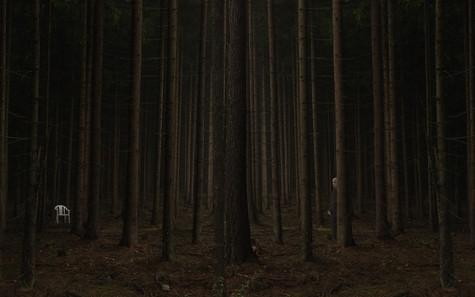 Dark Forest - The Chair