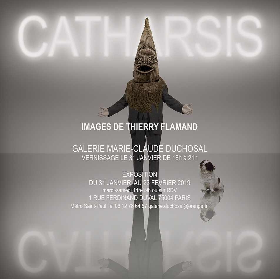 CATHARSIS EXPO