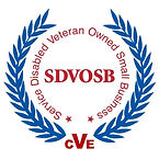 CVE Logo.jpg