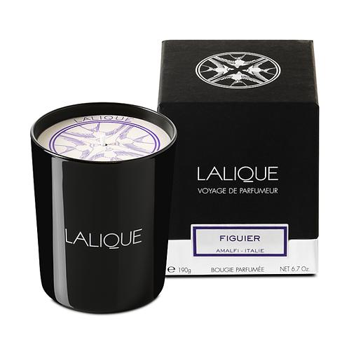 Lalique Vela Perfumada Figuier 190g