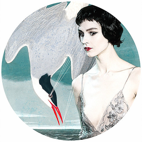 sexy beauty portrait with birds and lakes, Street art, Urban art from Alexandra Gallagher at Deep West Gallery