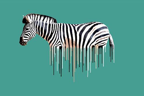 Zebra - Green , Giclee print, Pop art, Urban art,  by Carl Moore at Deep West Gallery