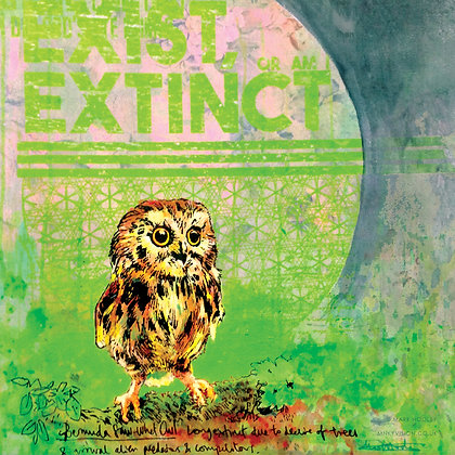 Owl,  Urban art print - Mark Hooley artwork at Deep West Gallery