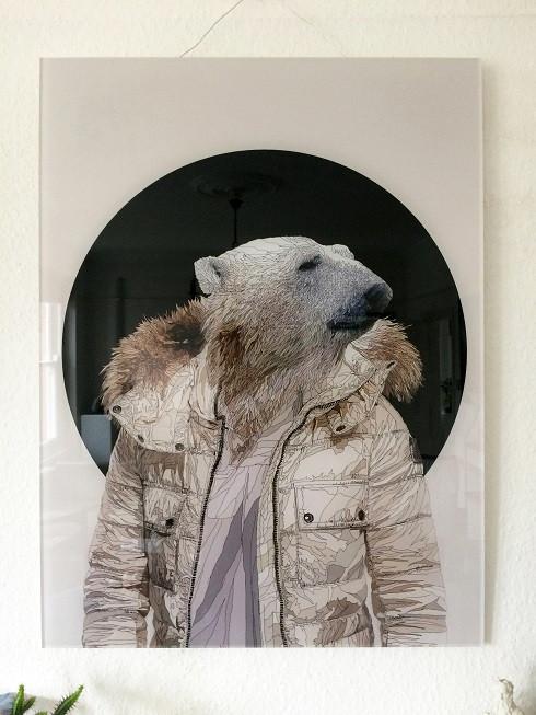 polar bear cool