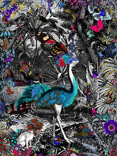 Butterflies, flowers and Peacock print, Urban and Street art by Kristjana S Williams at Deep West Gallery