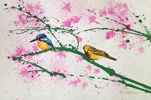 Birds water colour ,  Urban art print - Mark Hooley artwork at Deep West Gallery