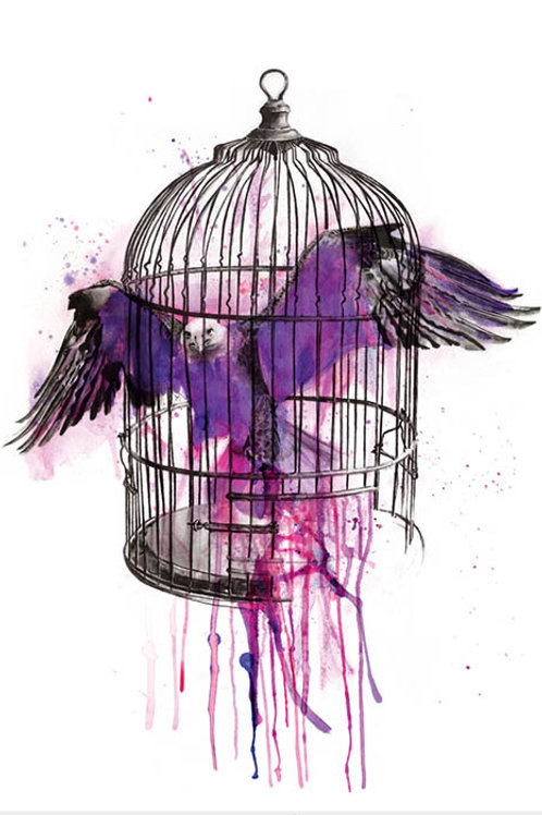 Bird wants to fly our of the cage , print, urban artwork by Kerry Beall at Deep West Gallery