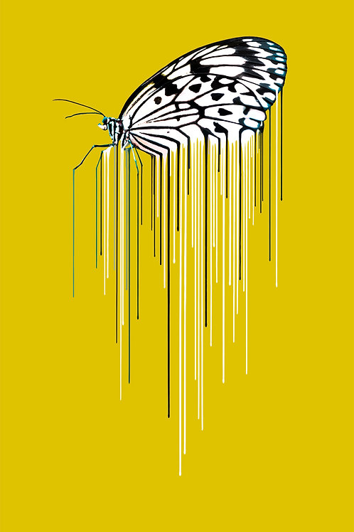 Butterfly - Ochre, Giclee print, Pop art, Urban art,  by Carl Moore at Deep West Gallery
