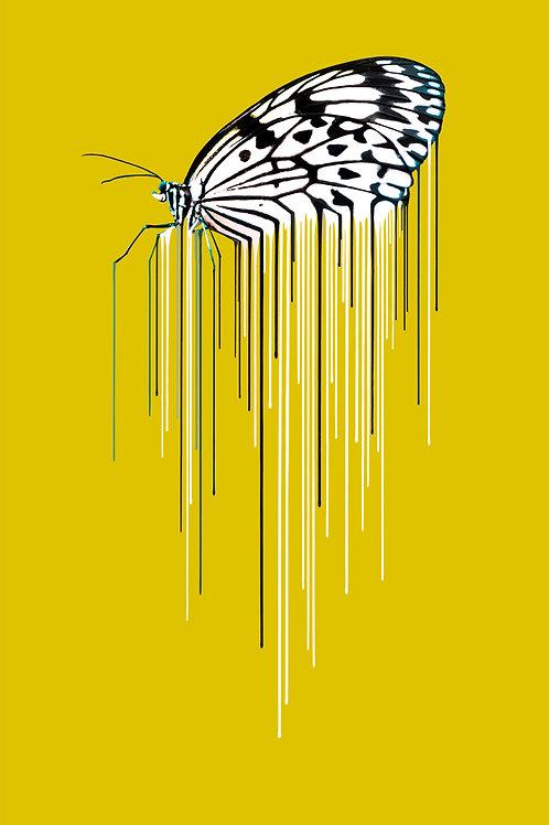 Butterfly - Ochre, Giclee print, Pop art, Urban art,  by Carl Moore at Deep West Gallery