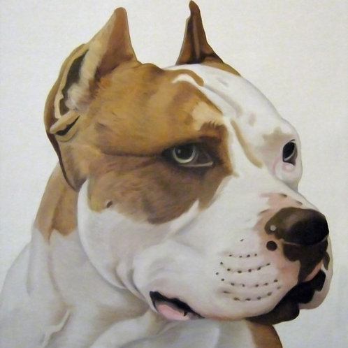 Pit bull portrait oil painting, urban art from Alfonso Ragone at Deep West Gallery