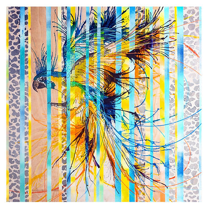 Striped Macaw in Mexico giclee print from British urban artist Emily Donald at Deep West Gallery