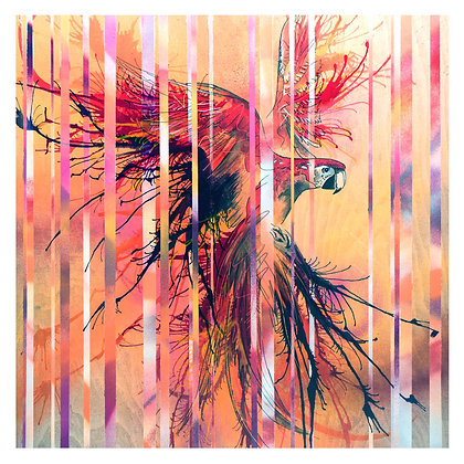 Scarlet Macaw in Costa Rica giclee print from British urban artist Emily Donald at Deep West Gallery