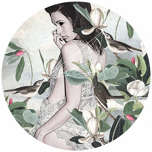 sexy beauty portrait with birds, flowers , Street art, Urban art from Alexandra Gallagher at Deep West Gallery
