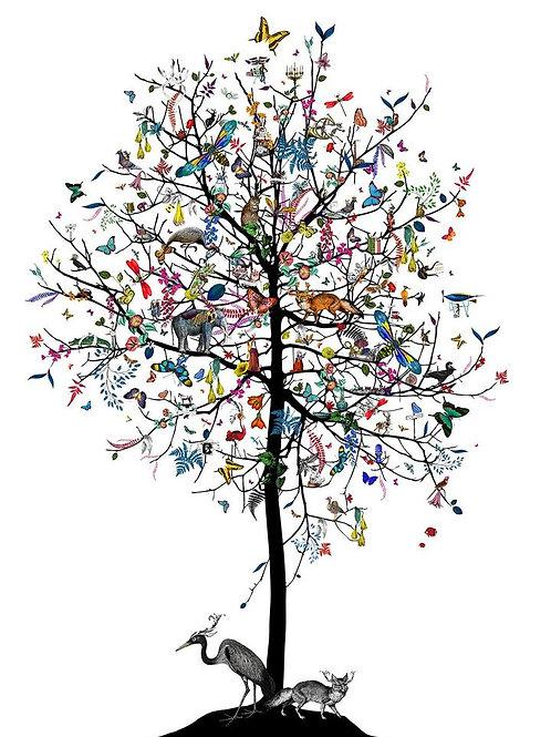 London aesop tree print, Urban and Street art by Kristjana S Williams at Deep West Gallery
