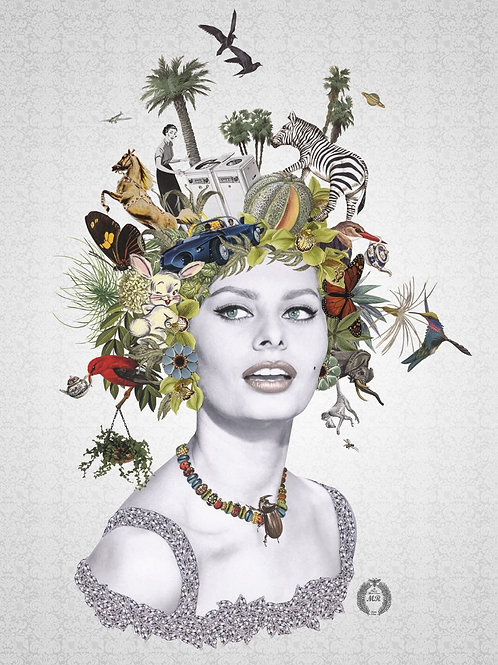 Sophia Loren Portrait  collage print - Maria Rivans artwork at Deep West Gallery
