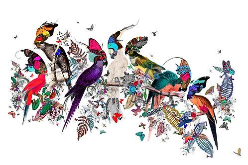 Butterflies, flowers, birds and trees print, Urban and Street art by Kristjana S Williams at Deep West Gallery
