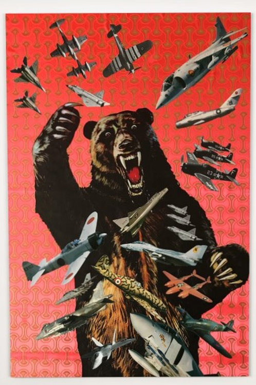 grizzly, planes, collages