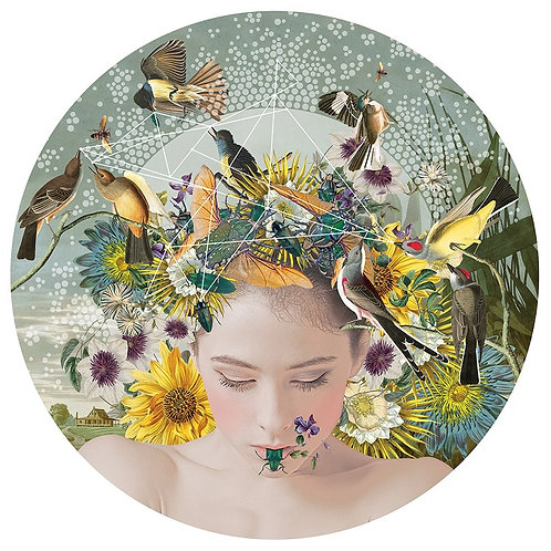 Mixed flowers ,birds and beauty street art print, from Alexandra Gallagher at Deep West Gallery