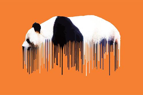 Panda - Orange , Giclee print, Pop art, Urban art,  by Carl Moore at Deep West Gallery