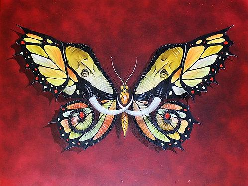 butterfly, elephant giclee print from Otto Schade Street (Graffiti ) artwork at Deep West Gallery