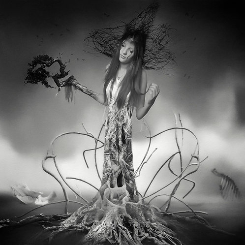 a black and white lady tree - Erik Brede' s abstract artwork ( digital artworks )at Deep West Gallery