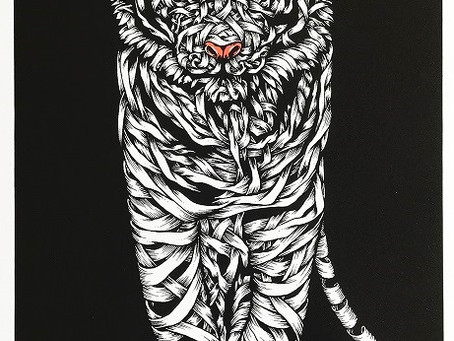 """New Release """"Tiger Threat"""", by Otto Schade now available"""