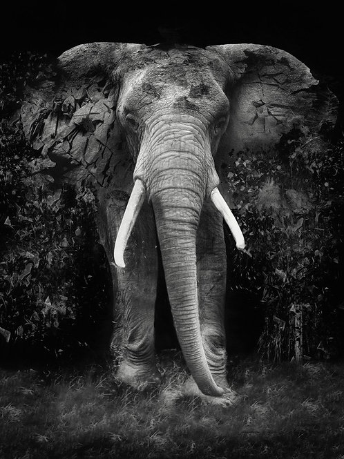 Elephant- Erik Brede' s abstract artwork ( digital artworks )at Deep West Gallery