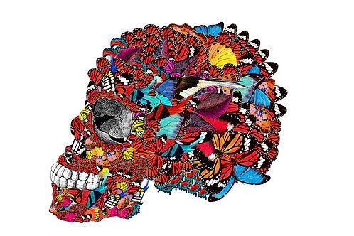Butterflies McQueen Skull in Mexico print, Urban and Street art by Kristjana S Williams at Deep West Gallery