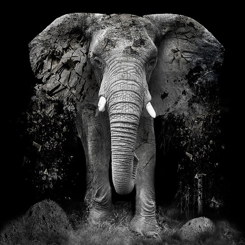 Elephant- Erik Brede' s abstract artwork ( digital artworks )at Deep West Gallery