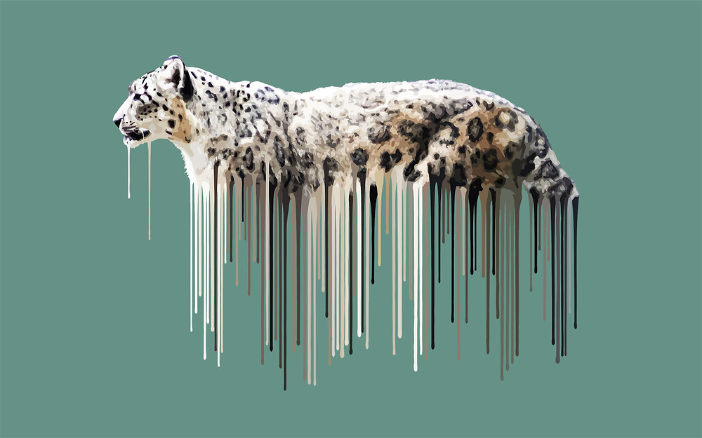 Leopard,  Sage