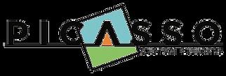 Picasso Custom Builders Logo.png