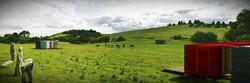 140609_Exterior Landscape 4