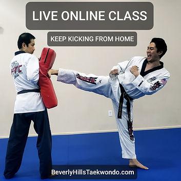 Live Online Taekwondo Class