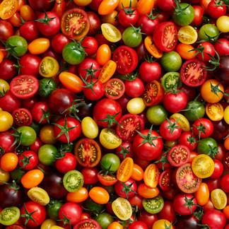 Tomatoes__Kim_Morphew_Food_Stylist_Garet
