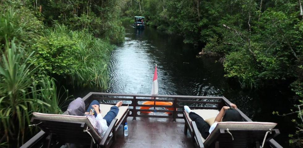 Tanjung Puting 4.jpeg