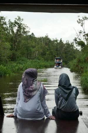 Tanjung Puting 9.jpeg