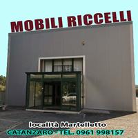 MRICCELLI.png