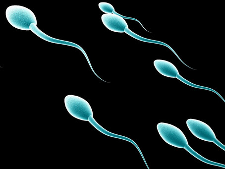10 Simple Strategies for Improving Sperm Quality