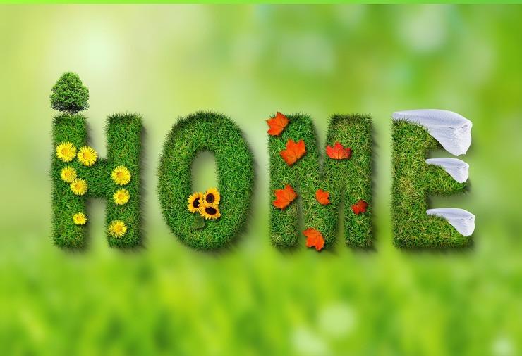 Spring-Comfreak | Pixabay
