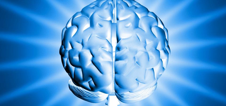 brainglo (1).jpg